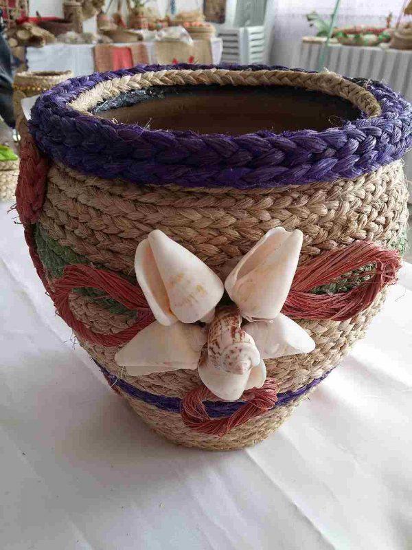 Muz lifi, vazo altı, büyük çiçekli